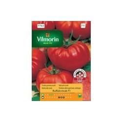 Pomidor gruntowy wysoki Buffalosteak F1 10z