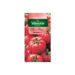 Pomidor szklarniowy Pink Wonder F1 7z