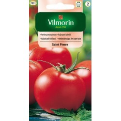 Pomidor gruntowy Saint Pierre 1g