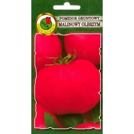 POMIDOR GRUNTOWY MALINOWY OLBRZYM 1G