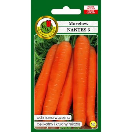 MARCHEW NANTES 3 5G