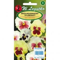 Bratek Szwajcarski wielkokwiatowy - typ Liebesduett 0,4g Legutko