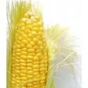 Kukurydze